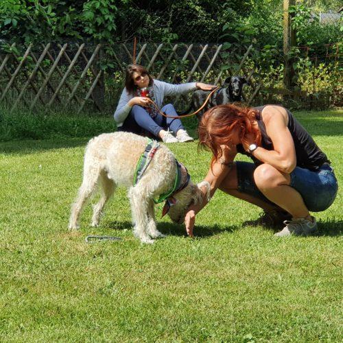 Eva Windisch zu Gast auf dem Tierschutzhof Karlsruhe