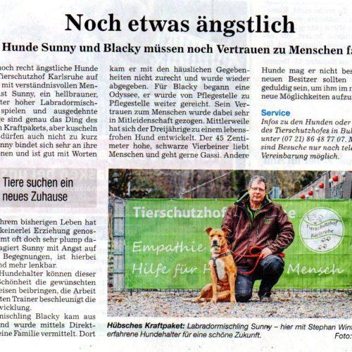 Unsere Hunde erstmals in den Badischen Neuesten Nachrichten BNN