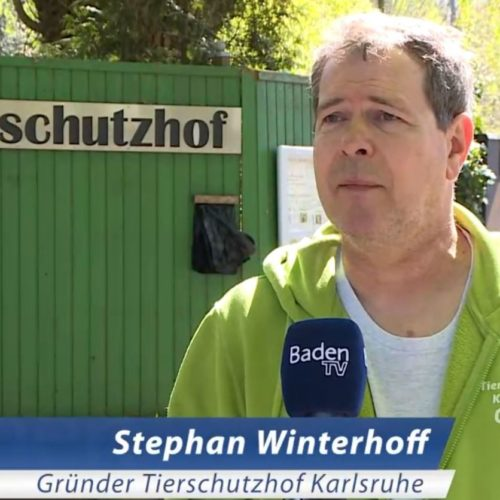 Baden TV zu Besuch auf dem Tierschutzhof Karlsruhe